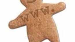 """Vezi ce """"cookies"""" ţi se salvează în browser"""