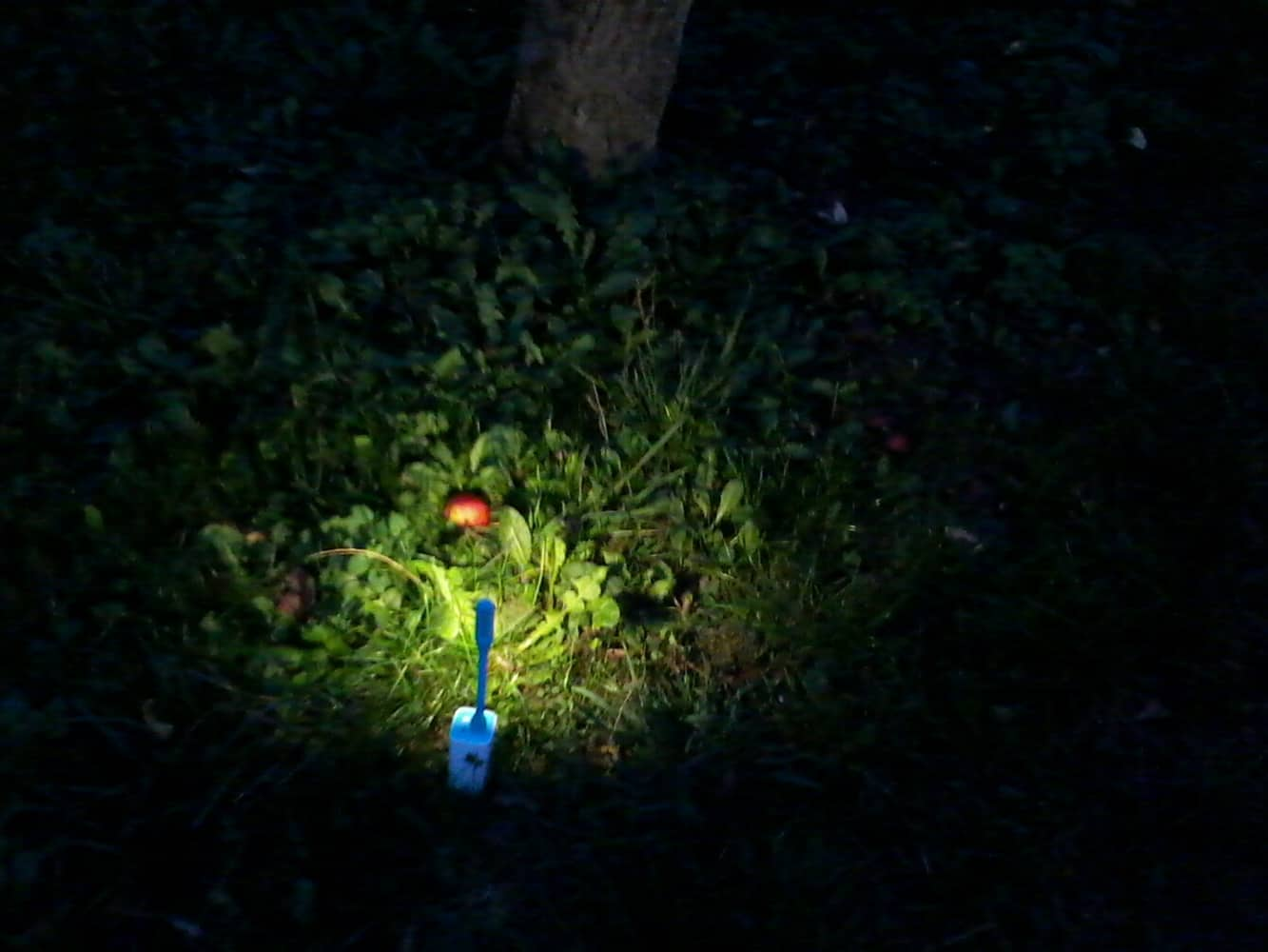 Xiaomi Led Light